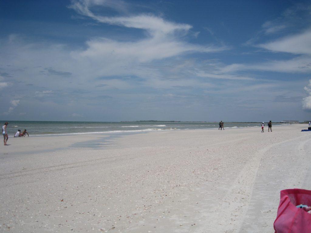 Beautiful Florida beaches, amazing sea shells